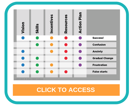 Transforming Organizational Capability and Performance Using CMMI V2.0