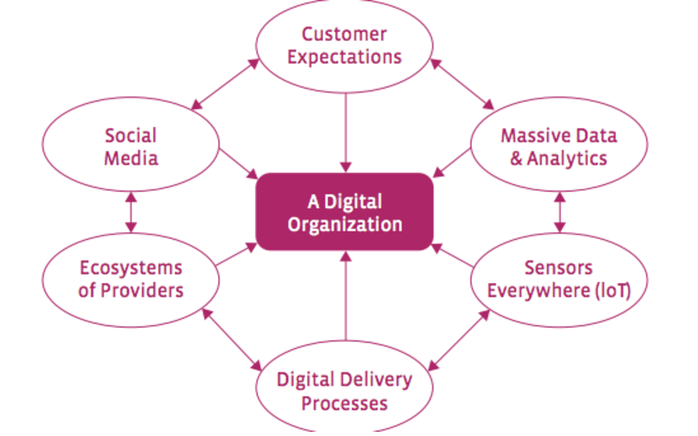 How to Transform Digital Organizations through Business Transformation