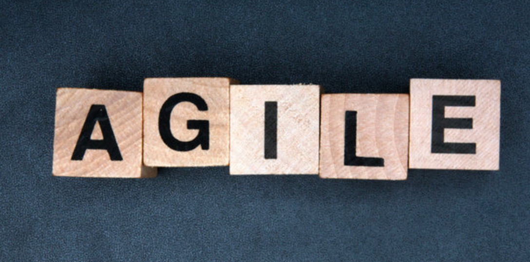 Agile and Agility in Business Transformation